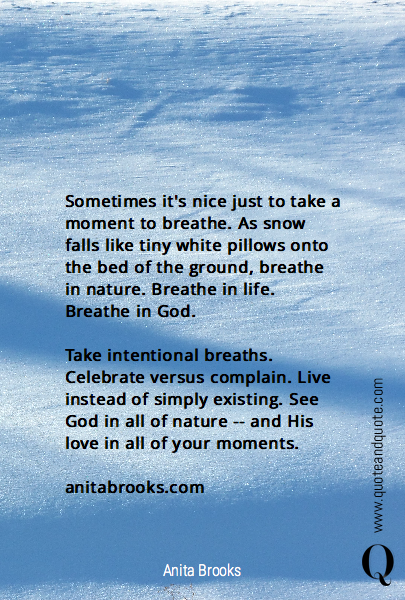 Sometimes it's nice just to take a moment to breathe. As snow falls like tiny white pillows onto the bed of the ground, breathe in nature. Breathe in life. Breathe in God.  