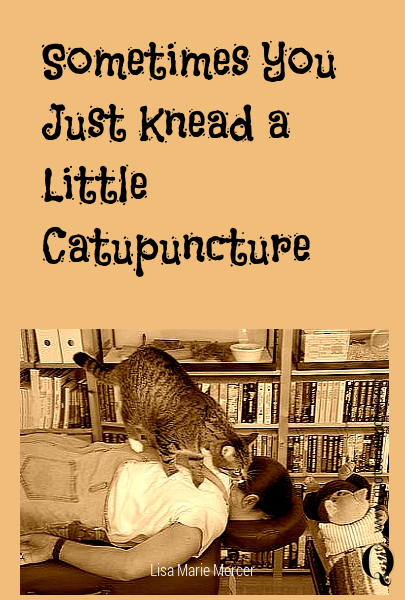 Sometimes You Just Knead  a Little Catupuncture