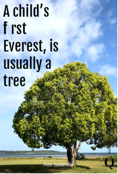 A child's first Everest, is usually a tree