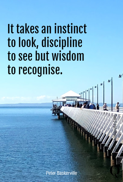 It takes an instinct to look, discipline to see but wisdom to recognise.
