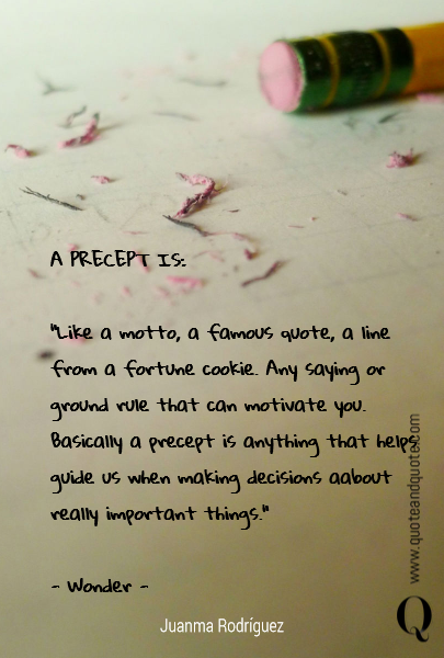 "A PRECEPT IS:  ""Like a motto, a famous quote, a line from a fortune cookie.  Any saying or ground rule that can motivate you. Basically a precept is anything that helps guide us when making decisions aabout really important things.""     - Wonder -"