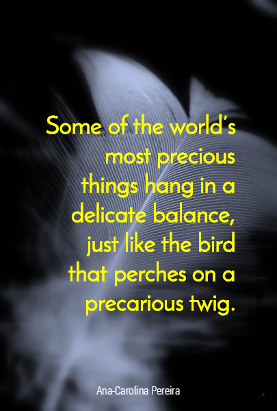 Some of the world's most precious things hang in a delicate balance, just like the bird that perches on a precarious twig.